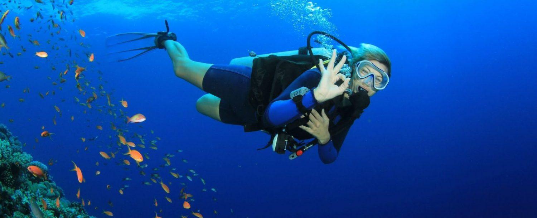 Cayman Brac Diving