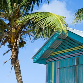 Things to Do in George Town in Grand Cayman