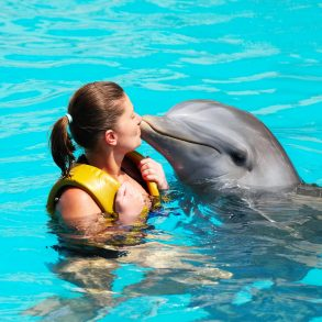 swim with dolphins in Grand Cayman