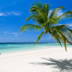 Fun Things to Do in Grand Cayman