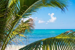 cayman islands events