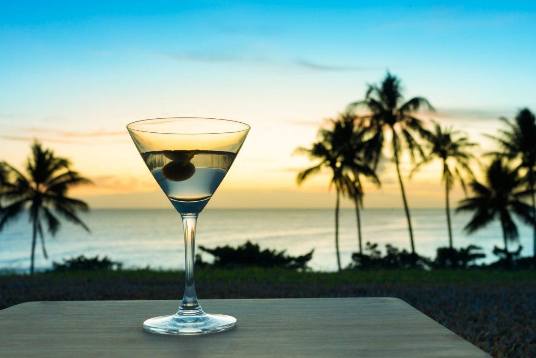 beach dining photo martini palms