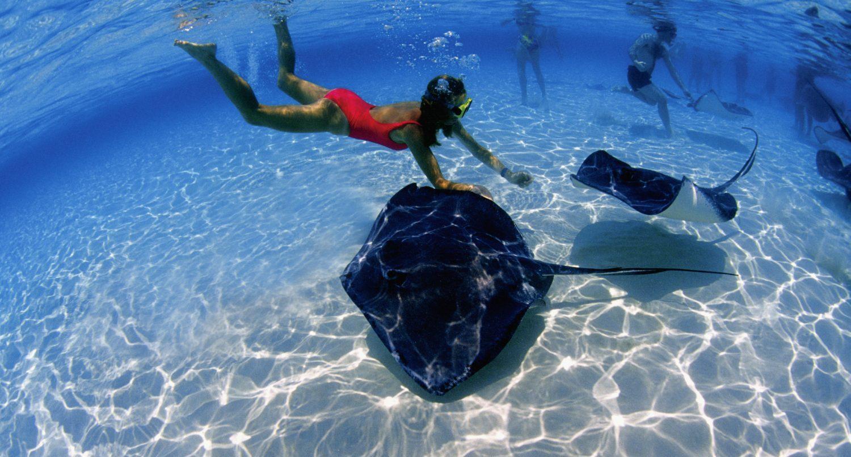 stingray city grand cayman woman swimming underwater with stingrays